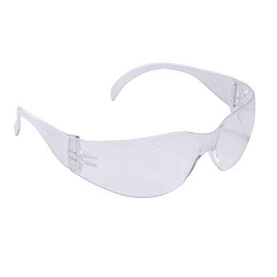 Economy Anti-Fog Safety Glasses