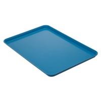 Blue Fiberglass Platter/Tray