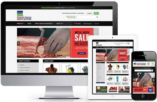 New Responsive Website from Bunzl Processor Division | Koch Supplies